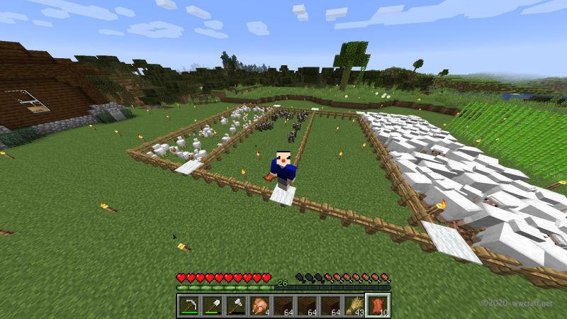 セナが地下室を作った日の牧場
