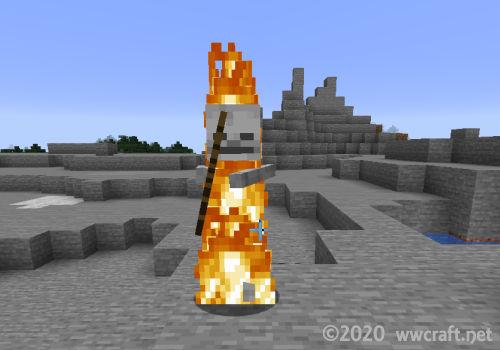 日光で燃えるスケルトン